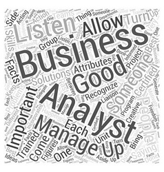 importance of a business analyst Word Cloud vector image