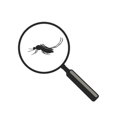 Mosquito with magnifier vector image