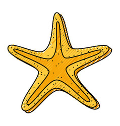 Scribble starfish cartoon vector