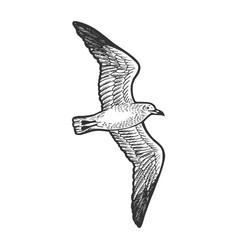 seagull bird sketch engraving vector image