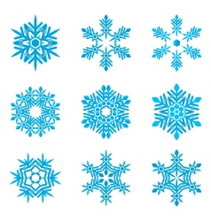 Set-of-blue-snowflakes-on-white vector