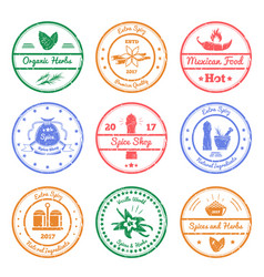 Spices and herbs stamps vector