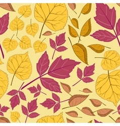 Pattern with leaves on a yellow vector image vector image