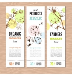 Banners whith stems of cotton plants vector