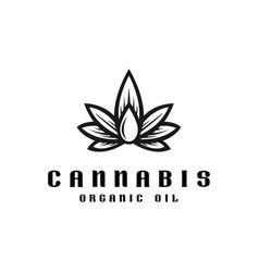 cannabis oil logo template vector image