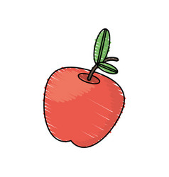 Drawing apple fruit food vector