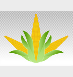 Ear corn maize flat color icons vector
