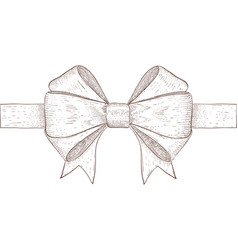 ribbon bow hand drawn sketch vector image