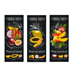 Tropical fruits chalkboard label set vector