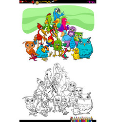 birds animal characters group color book vector image