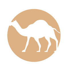 Camel manger character icon vector