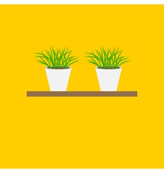 Grass in flower pot on shelf Growing Icon set vector