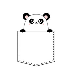 panda bear head face in pocket holding paw vector image