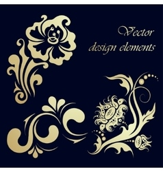 set floral design elements vector image