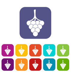 grapes on the branch icons set flat vector image vector image