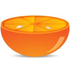 Half of orange isolated vector image