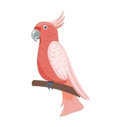 Cartoon parrot bird vector image