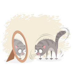 Cat and mirror vector