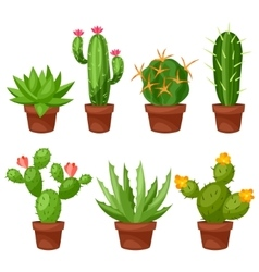 collection abstract cactuses in flower pot vector image