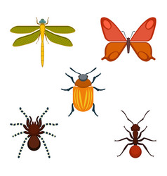 Collection of bugs and insects on vector