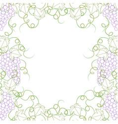 Colorful line grape frame vine on white background vector