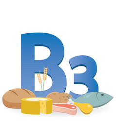 foods rich in vitamin b3 vector image