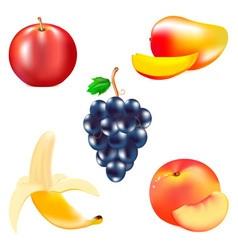 Fruits 2 vector