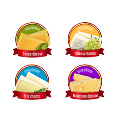 realistic cheese labels set vector image