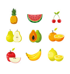 set delicious tropical and exotic fruit vector image vector image