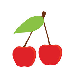cherry icon vector image