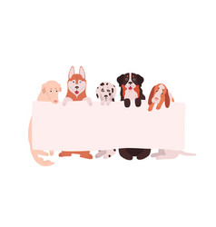cute dogs holding empty horizontal advertising vector image