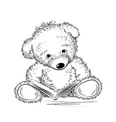 Drawing teddy bear with book vector