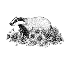 Hand drawn badger with flowers Vintage style vector image