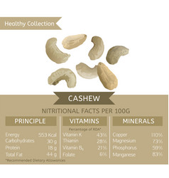 Healthy collection cashew vector