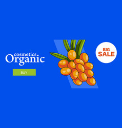 organic cosmetics web banner vector image