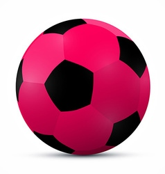 Pink Ball Isolated on White Background vector image