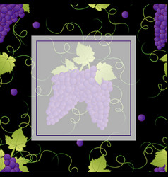 Pueple grape banner on black background2 vector