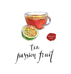 tea from passion fruit vector image