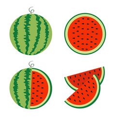 watermelon icon set whole ripe green stem slice vector image