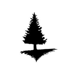 the black silhouette of a pine tree on an isolated vector image