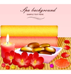 background for spa vector image