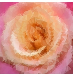 beautiful rose closeup vector image