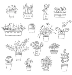 cute hand drawn flowers in pots vector image