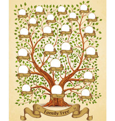 Family Tree template vintage vector