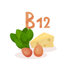 food sources of vitamin b12 green spinach chicken vector image