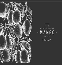 mango banner hand drawn exotic fruit on chalk vector image