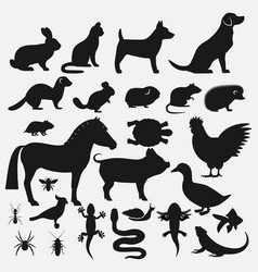 Pets silhouettes icons set vector