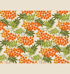 rowanberry seamless pattern vector image