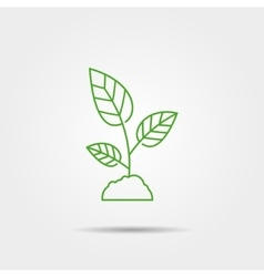 Sprout icon vector image
