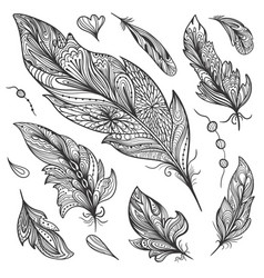 sketch feather set vector image vector image